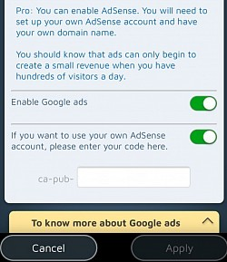 You can activate your own Google Ads on your Pro site.